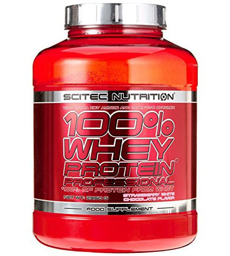 whey-protein4